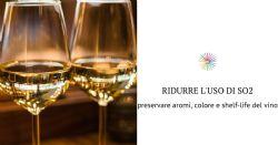 Previsione sull'evoluzione della concentrazione dei solfiti post imbottigliamento e sulla durata di vita del vino