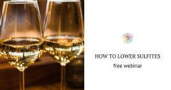 How to lower sulfites in white and rosé wines while preserving their shelf-life