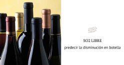 Predicción de la evolución de la concentración de sulfitos después del embotellado y duración del ciclo de vida del vino