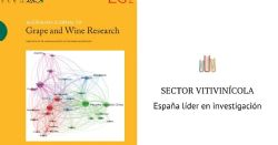 España lidera la investigación científica sobre vino en el mundo