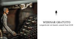 Registrazioni Webinar Gratuito - Potenziamento della longevità dei vini bianchi attraverso la chiarifica dei mosti