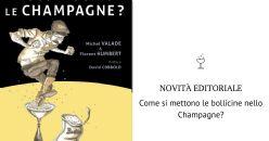 Come si mettono le bollicine nello Champagne?