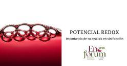 Influencia del potencial electroquímico en enología
