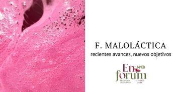 Malolactic fermentation: knowledge versus practice