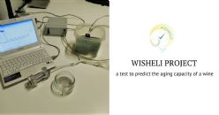 The WISHELI project: development of new production technics to improve the shelf life of white wines from the Umbrian region in Italy - a test to predict the aging capacity of a wine