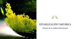 Estabilización tartárica de vinos blancos con carboximetilcelulosa (CMC) - Eficiencia y economía