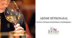 Les facteurs liés au vin et à la physiologie humaine influant sur la libération des arômes lors de la consommation de vin