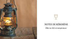 Seuil sensoriel du TDN dans le vin de Riesling