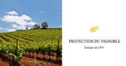 Dossier de l'IFV : Spéciale Protection du Vignoble