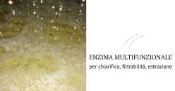 EnartisZym EZFilter, l'enzima che fa la differenza