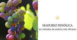 Compuestos Fenólicos  y Madurez fenólica
