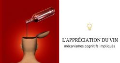 Les facteurs clés de la consommation et de l'appréciation du vin : une approche cognitive