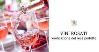 Vini rosati: tante sfumature da preservare