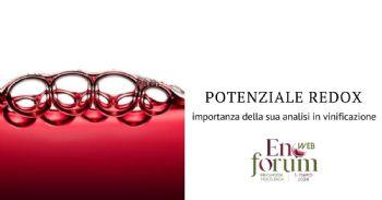 Influenza del potenziale elettrochimico in enologia