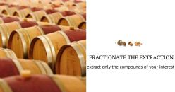 ENOTIMATIC: Infusion of excellence at support to the winemaker