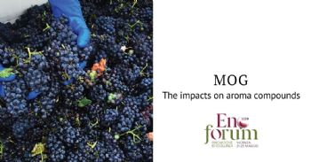 The impacts of material-other-than-grapes (MOG) on aroma compounds of red wine varieties