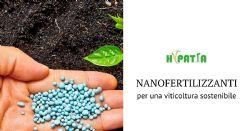 Lo sviluppo di nanofertilizzanti per una agricoltura sostenibile e l'ottimizzazione di pratiche di fertilizzazione nei vigneti