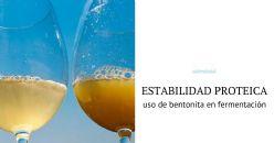 Empleo de productos a base de bentonita en vinos blancos durante la fermentación alcohólica: efecto sobre la estabilidad proteica