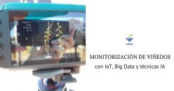 VINIoT: servicio de viticultura de precisión para PYMES basado en red de sensores IoT