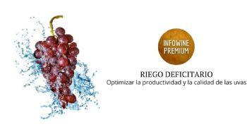 Riego del viñedo y maduración de las uvas