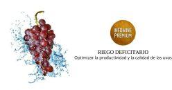 Efecto del riego en la maduración de la uva