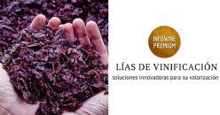 Una nueva vida para las lías de vinificación: de residuos al fotovoltaico