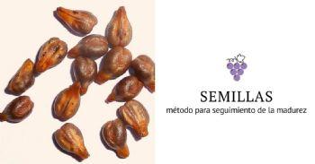 Seguimiento de la madurez de las semillas mediante escáner