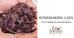 A new life for winemaking lees: from waste to photovoltaics