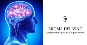 Sensori per valutare la stimolazione sensoriale umana all'aroma del vino