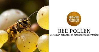 Effect of the addition of bee pollen to white grape must during alcoholic fermentation