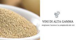AB Biotek e SOL Spa lanciano in Italia una nuova gamma di ingredienti Premium per il vino