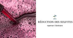 La réduction des teneurs en sulfites dans les vins : repenser l'itinéraire