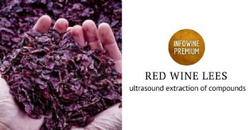 Ultrasound-assisted extraction of anthocyanins and polyphenolic compounds in red lees