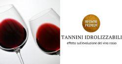 Effetti della composizione del vino rosso sulla cinetica di consumo dell'ossigeno in presenza di tannini enologici