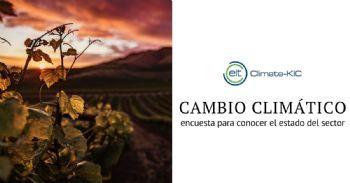 Ecosistema mediterráneo de la vid y el vino