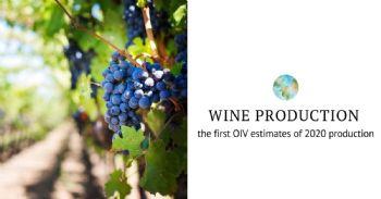 OIV: Producción de vino en 2020 por debajo de la media