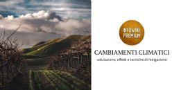 Cambiamenti climatici rispetto all'industria del vino in Emilia Romagna: valutazione del cambiamento climatico, influenza sull'industria del vino e tecniche di mitigazione