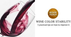 Wine Color Stability - 5 practical tips on how to improve it