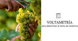 Uso de voltametría de barrido lineal para determinar la fecha de vendimia de Sauvignon Blanc