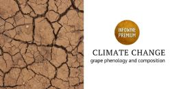 Prospects for change in Rioja DOCa vineyards under climate change scenarios