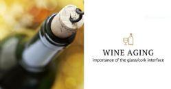 "Estágio do vinho: ""a bottleneck story"""