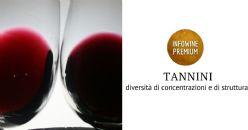 I tannini nei principali vini rossi italiani: concentrazione e diversità strutturali
