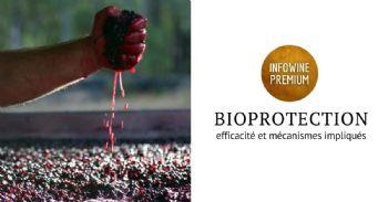 La bioprotection en oenologie: une véritable alternative aux sulfites?