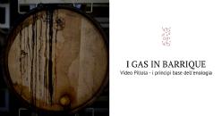 Video Pillola - La barrique, l'ambiente di stoccaggio e la qualità del vino