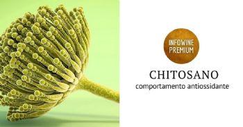 I meccanismi che presiedono il comportamento antiossidante del chitosano in vino: evidenze di laboratorio e tecnologiche