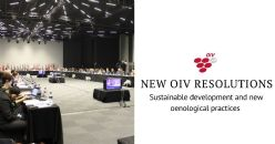 New OIV resolutions