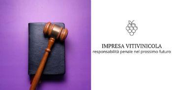 La responsabilità penale dell'impresa vitivinicola in un prossimo futuro