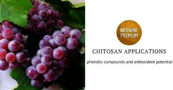 Chitosan applications in vineyards and effects on gene expression