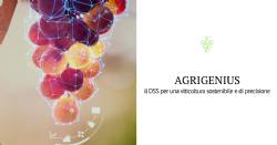 Agrigenius Vite, il DSS di BASF per la viticoltura sostenibile e di precisione