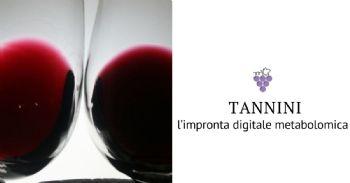 I tannini nei principali vini rossi italiani: l'impronta digitale metabolomica